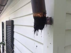 photo 12 300x224 3 - The Best Way to Clean Gutters